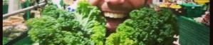 Kale-Auchan-Lyon-Stephen-940x198