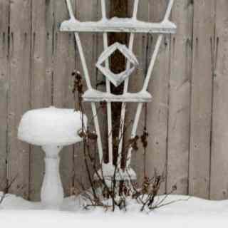 snow_512x384