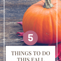 5 Things to Do This Fall