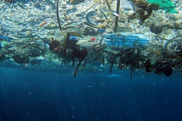 The Convenience of Plastic Is Killing Our Oceans