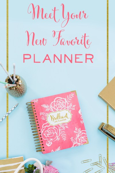 The Best Planner for 2017