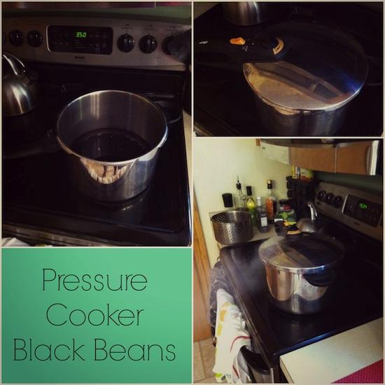 pressure cooker black beans How to Cook and Freeze Beans