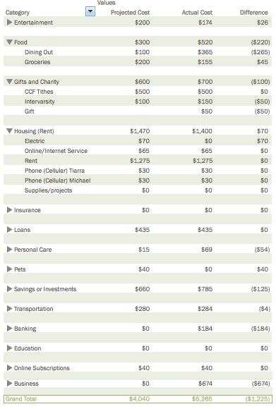 Budget Details