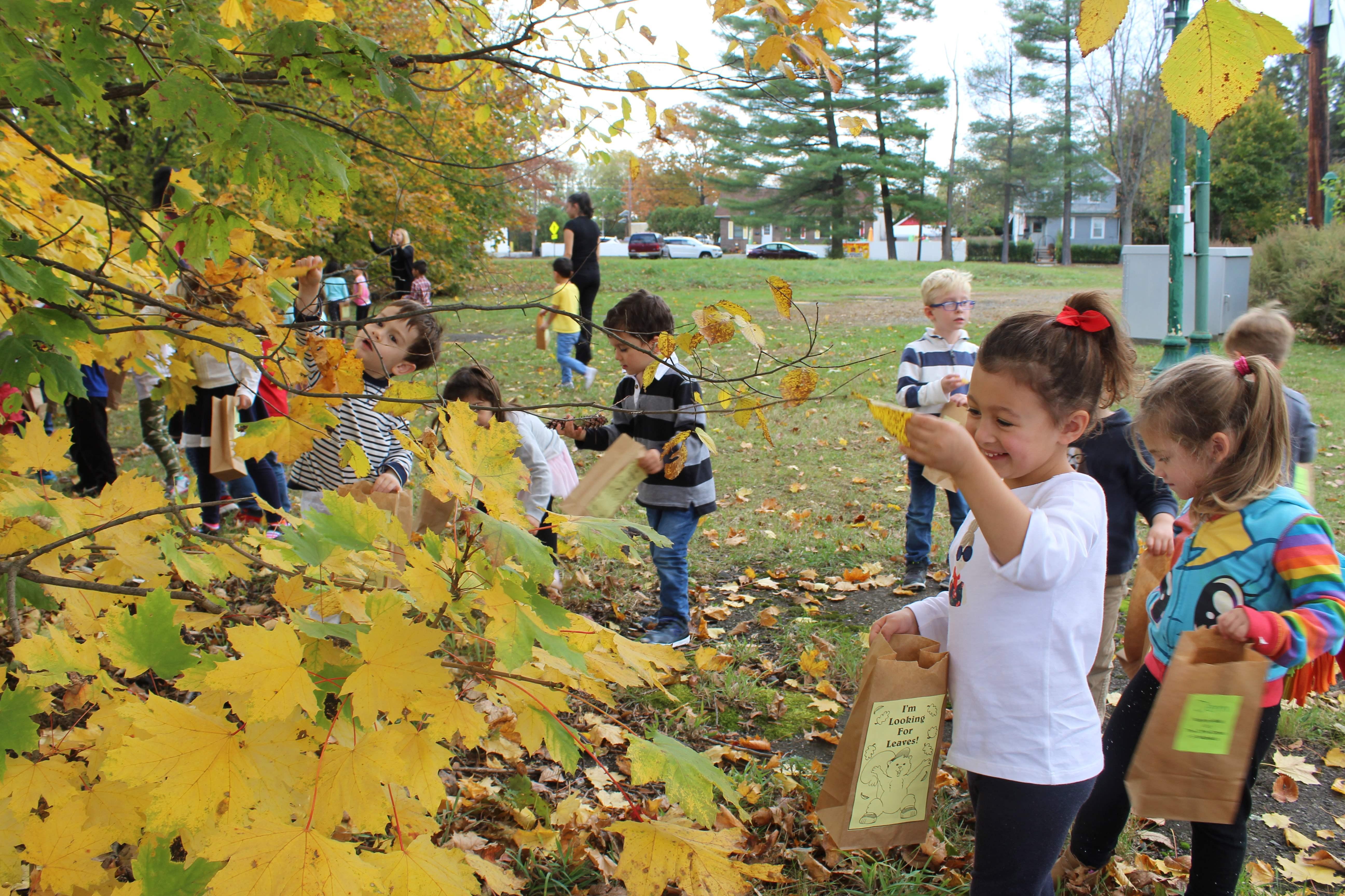 nature walk the little school of waldwick preschool education in