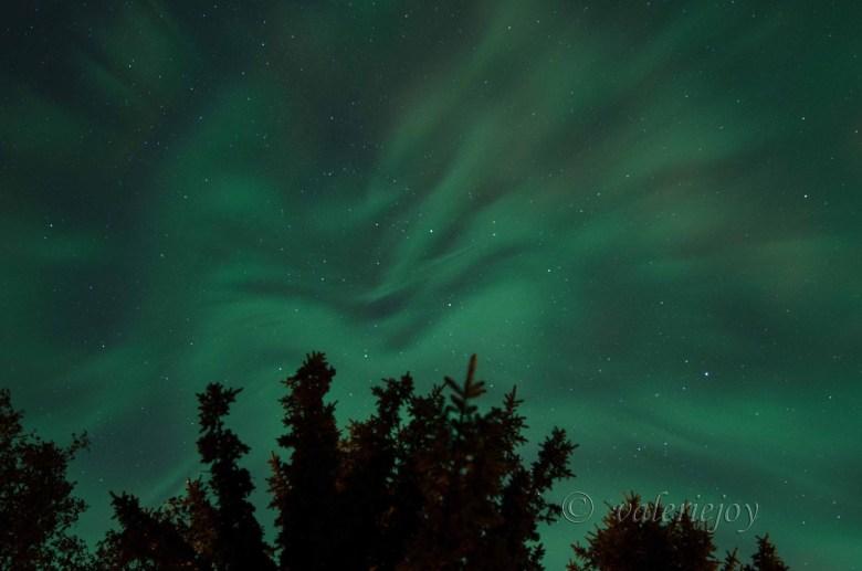"""Credit: Valerie Horner, """"Sparkling Corona"""" taken in Prince Albert"""