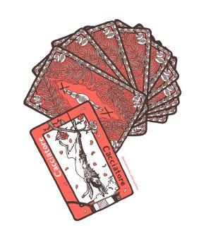 Cacciatore-cards