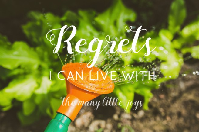 Regrets I can live with copy