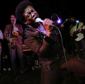 CHARLES BRADLEY: SOUL OF AMERICA plays Hot Docs