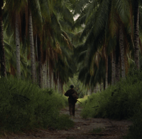 Watch it Again: THE THIN RED LINE