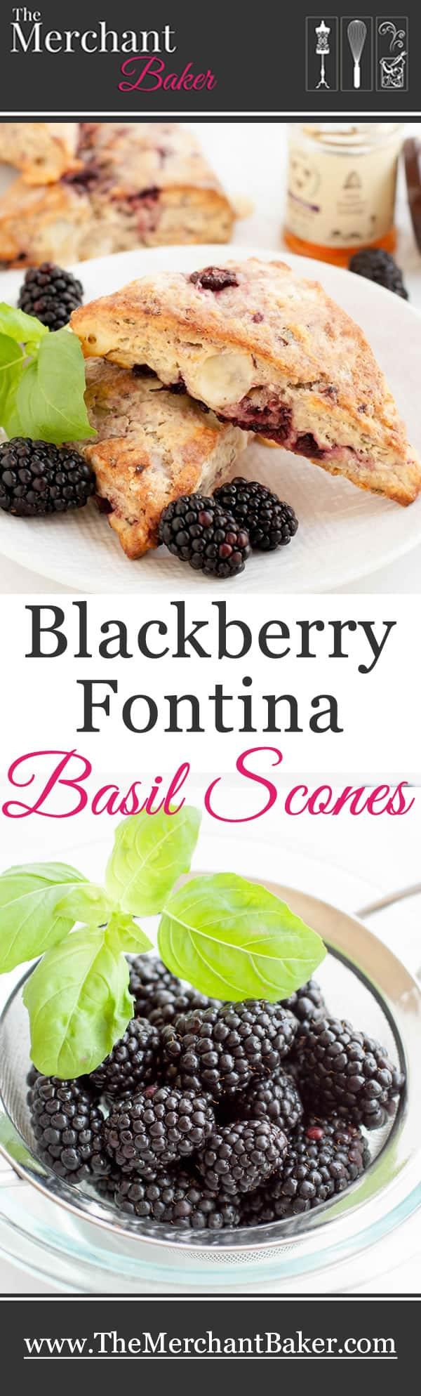 Blackberry Fontina Basil Scones