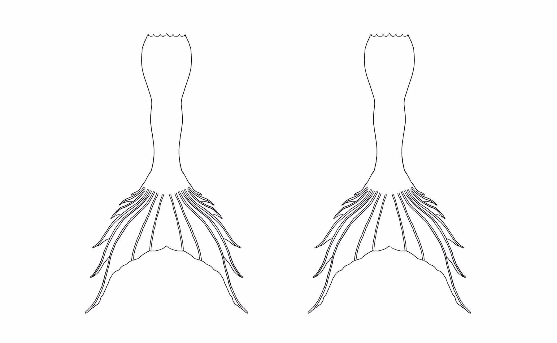 Fullsize Of Mermaid Tail Outline