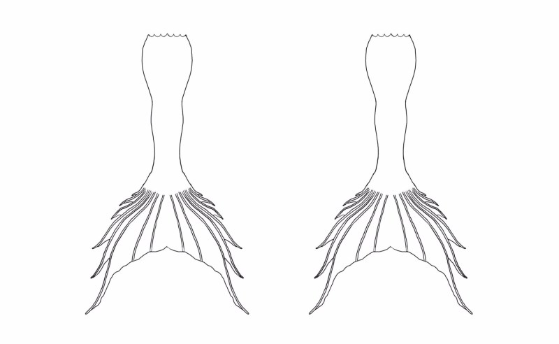 Large Of Mermaid Tail Outline