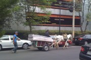 A horse-drawn buggy carries two mattresses in Mexico City