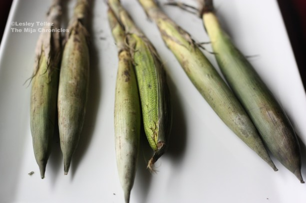 Corn from Mercado La Merced