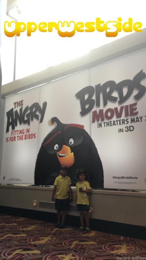Angry Birds7