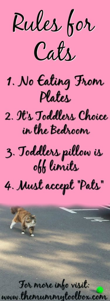Rules for the Cats - Cats vs Toddlers - how we keep harmony in the house and help them form bonds