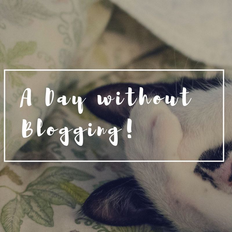 A day without blogging!