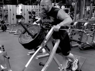 Back - Plate Loaded Rows