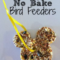 Easy No Bake Bird Feeders