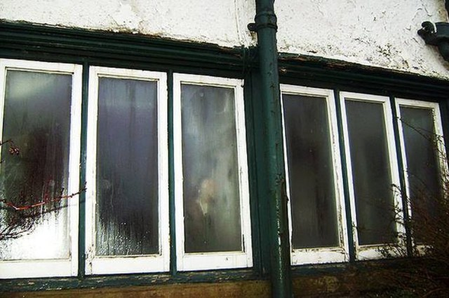 Ghost Pictures: The Old Lady and The Abandoned Guesthouse