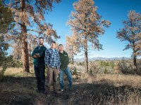 Tree physiologist Nate McDowell, center, climatologist Park Williams, left, and ecologist Craig Allen, right, are studying how trees die to help predict how forests will fare in a hotter future. Credit: Michael Clark.