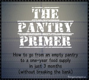 Pantry Primer: How to Build a One Year Supply of Food in 3 months / The DayOne Gear Blog