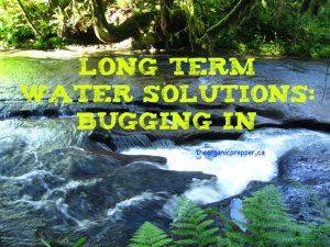 Water solutions for bugging in