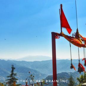 All About Taradevi Temple Trek, Shimla – A Beginner Trekking Trail