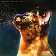 Mesi – A Tortie Burmese Cat Painting – Sold