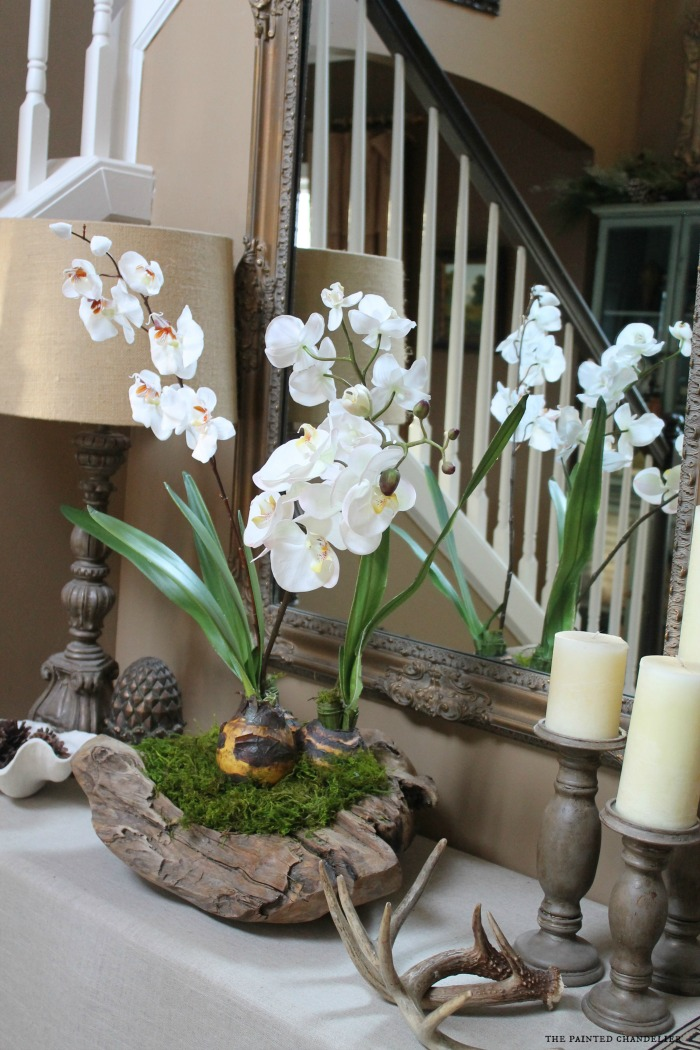 Foyer Table Flowers : How to make an orchid in a rustic bowl arrangement