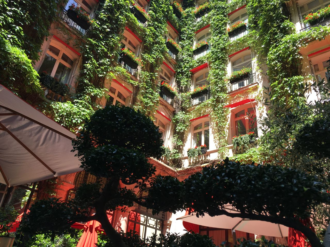 La cour jardin plaza ath n e the parisienne for Jardin plaza