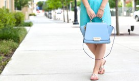 zac zac posen handbag