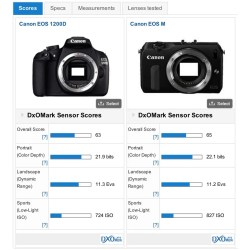 Small Crop Of Nikon D3300 Vs Canon T5