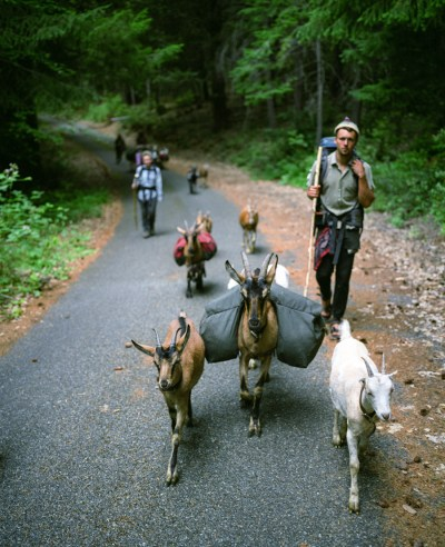 Modern nomads formed a tribe to live a traditional Native ...