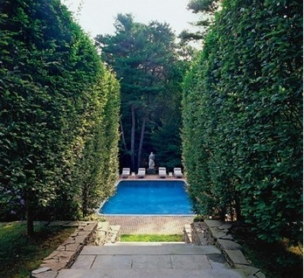 Hedged Pool Enterance via Habitually Chic