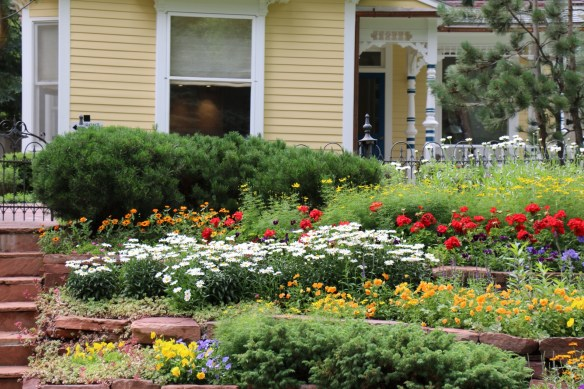Aspen Home Flowers