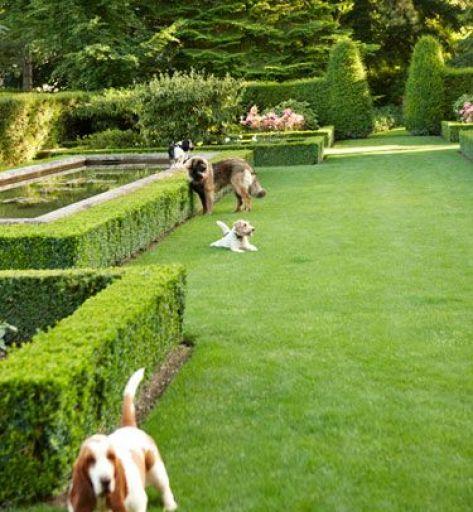 Caroline Scheufele Garden via Veranda