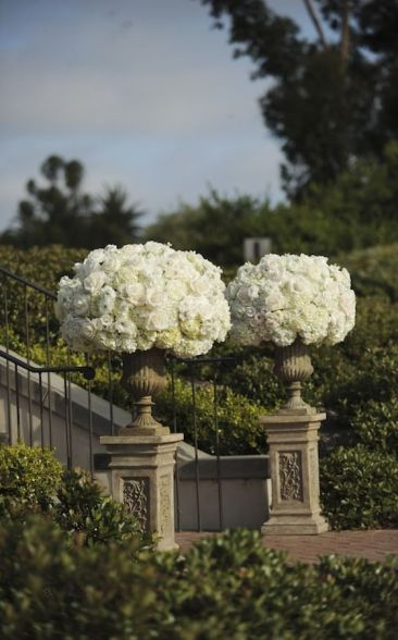 Potted Hydrangeas and Roses via Style Me Pretty