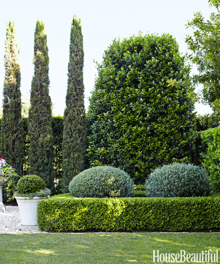 Gorgeous Boxwoods at Barbara Barrys Home via HB