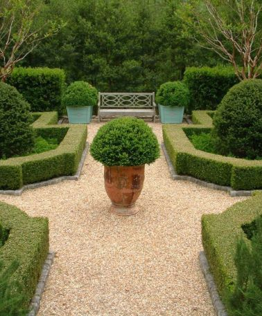 A Potted Boxwood Perfected via Mark Sikes