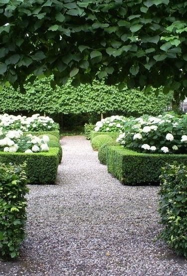 Gravel path of hedges and beautiful flowers