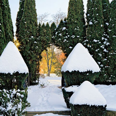 Snow topiary in Ladew's gardens via Southern Living