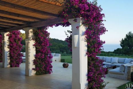 bougainvillea climbing on the columns of the Gottschalks home in Ibiza via AD