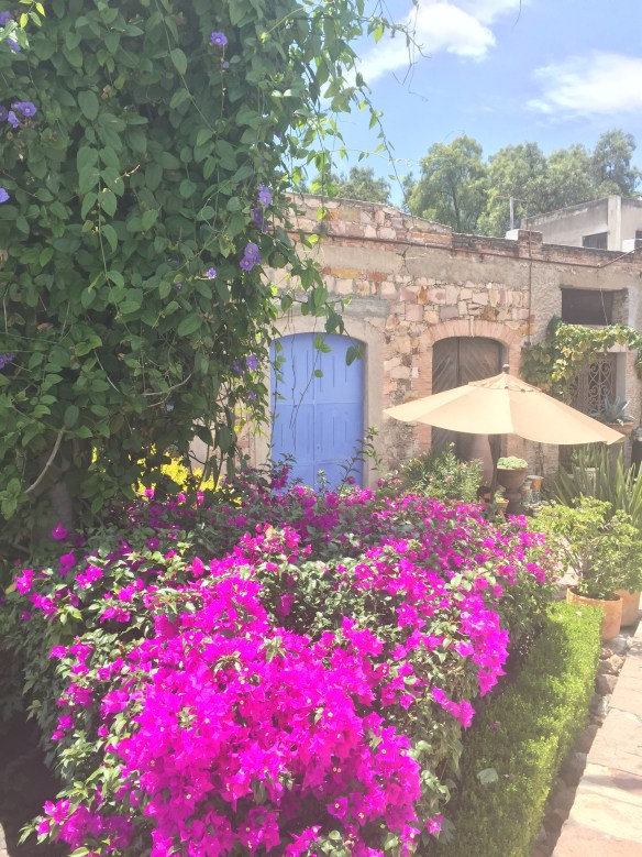 Doors of San Miguel by The Potted Boxwood 18