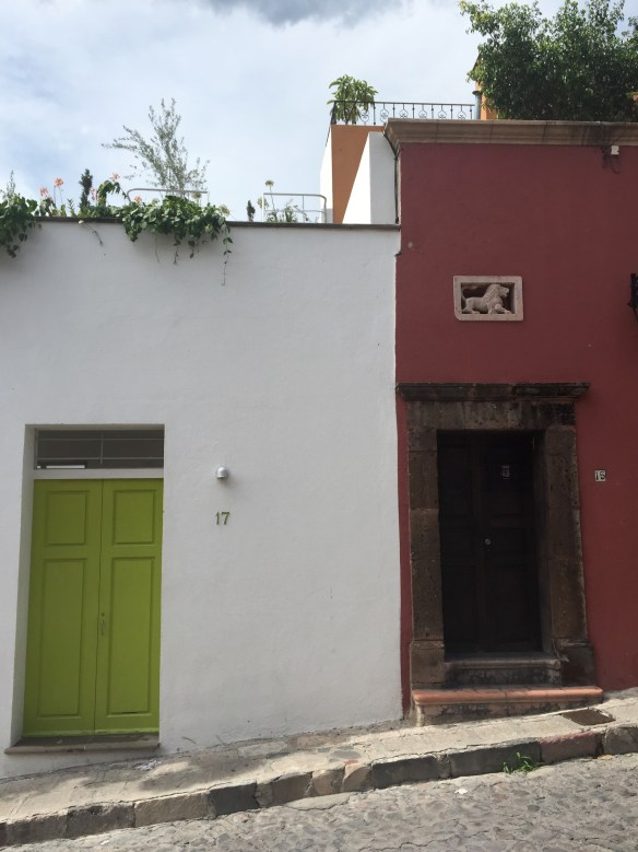 Doors of San Miguel by The Potted Boxwood 26