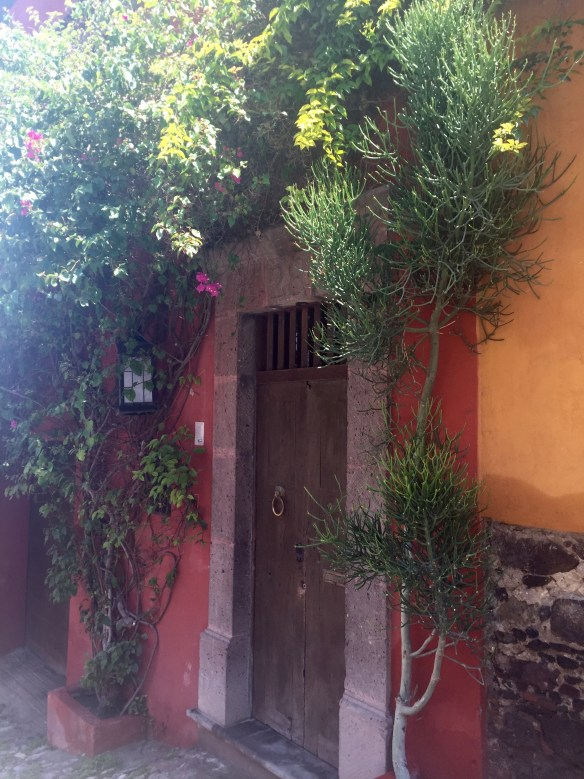 Doors of San Miguel by The Potted Boxwood 42