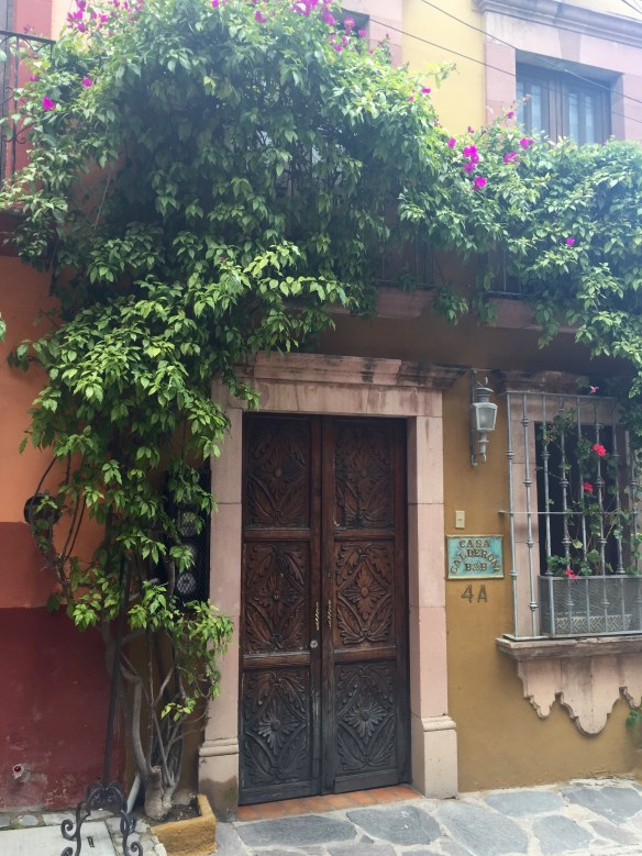 Doors of San Miguel by The Potted Boxwood 47