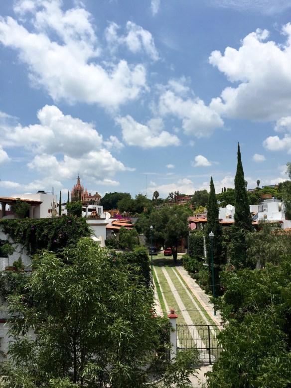 San Miguel de Allende The Potted Boxwood 16
