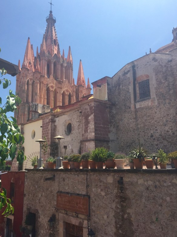 San Miguel de Allende The Potted Boxwood 3