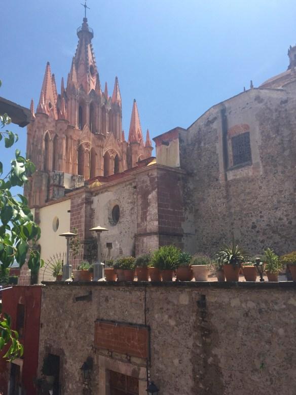 San Miguel de Allende The Potted Boxwood 3